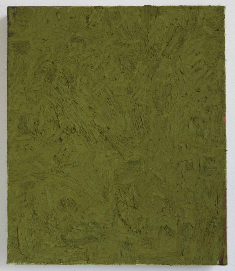 Art Alarm – Alan Ebnother, Yellowish military green, 2015, Öl auf Leinwand, 60 x 50 cm
