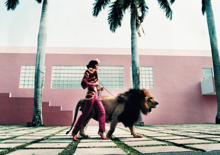 "Art Alarm – Esther Haase, ""The fearless Lola walking the Lion King"", Miami, November 1999"