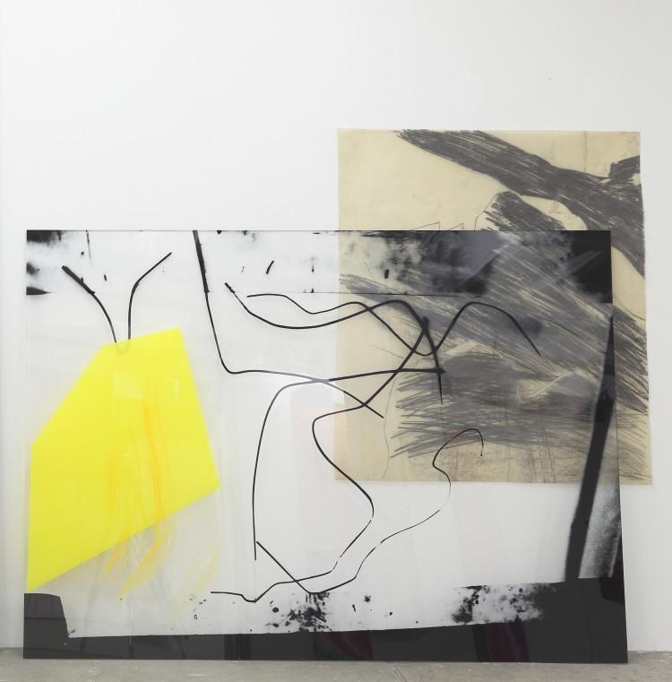 Art Alarm – Claudia Thorban, Farn, 2020, Fotodrucke auf Acrylglas, Zeichnung