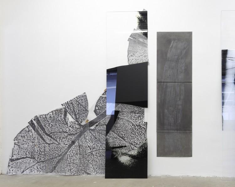 Art Alarm – Claudia Thorban, Seerose, 2020, Fotodruck/Acrylglas, Collage, Zeichnung